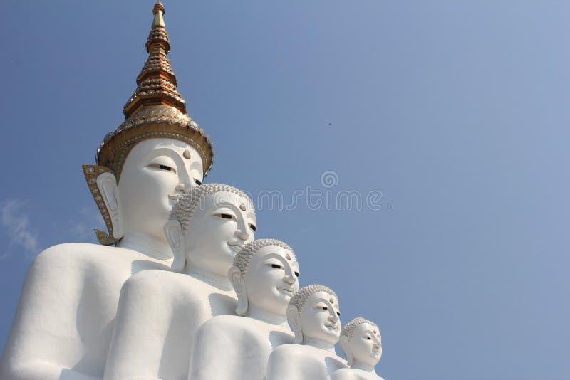 Pięć Buddha statua na Wacie Phasornkaew obrazy royalty free