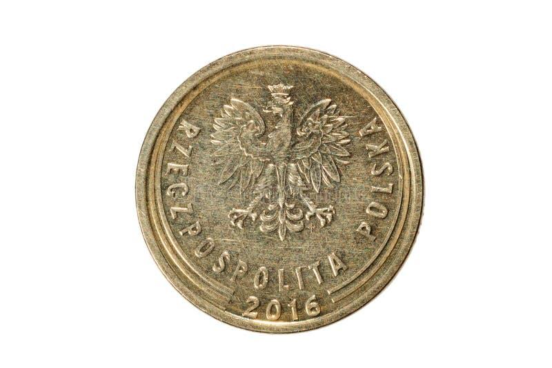 Pięć groszy polerujący złoty Waluta Polska Makro- fotografia o zdjęcia stock
