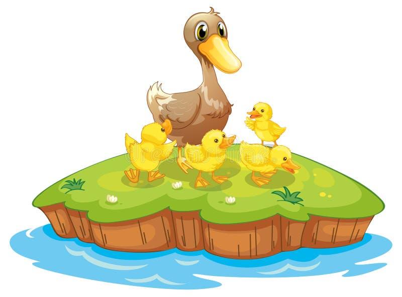 Pięć kaczek w wyspie ilustracja wektor
