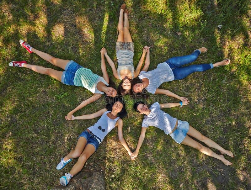 Pięć młodych dam lounging na trawiastym gazonie zdjęcie stock