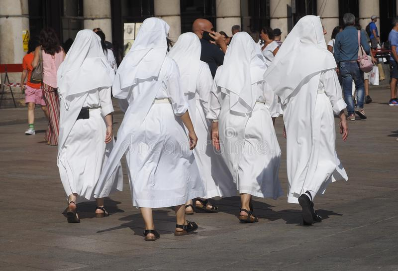 Pięć magdalenek w bielu fotografia royalty free