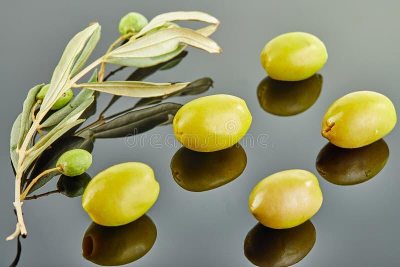 Pięć oliwek z drzewo oliwne gałąź z owoc kłama na szarym tle fotografia royalty free