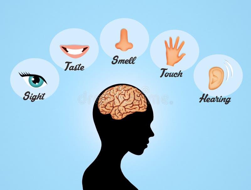 pięć zmysłów royalty ilustracja