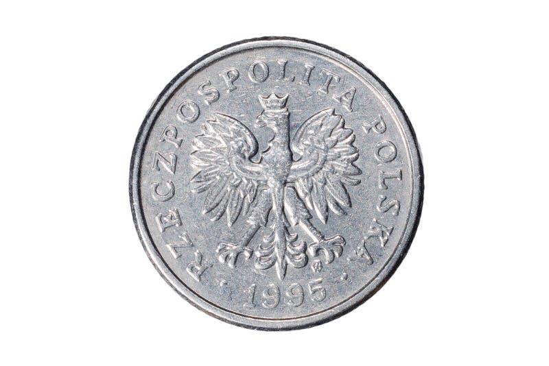 Pięćdziesiąt groszy polerujący złoty Waluta Polska Makro- fotografia moneta Polska przedstawia połysk groszy monetę fotografia stock