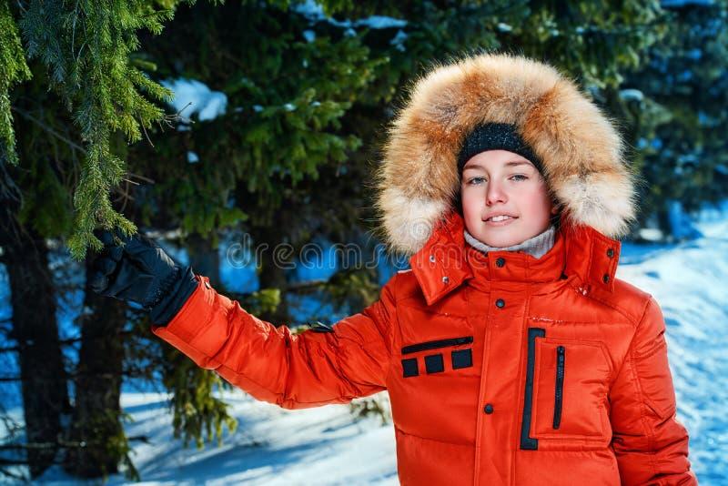 Piękna śnieżna zima zdjęcie royalty free