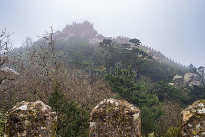 Piękna średniowieczna grodowa panorama z battlement w mgle zdjęcia royalty free