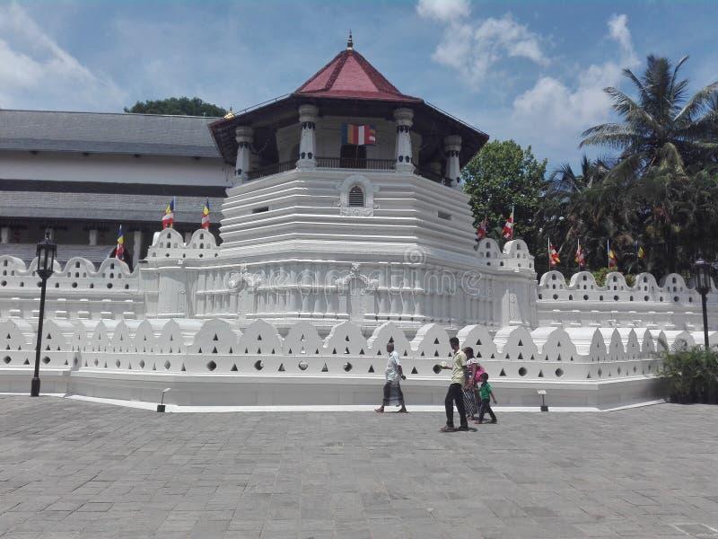 PIĘKNA świątynia ząb SRILANKA zdjęcia royalty free