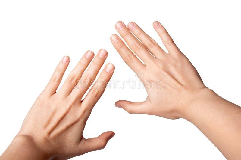 Piękna żeńska ręki ręka odizolowywająca na białym tle obrazy royalty free