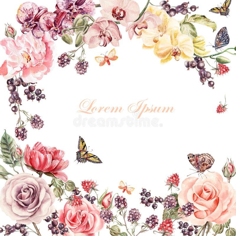 Piękna akwareli karta z peonią, róże, irysowy kwiat Rodzynki, agresty i malinki, ilustracja wektor