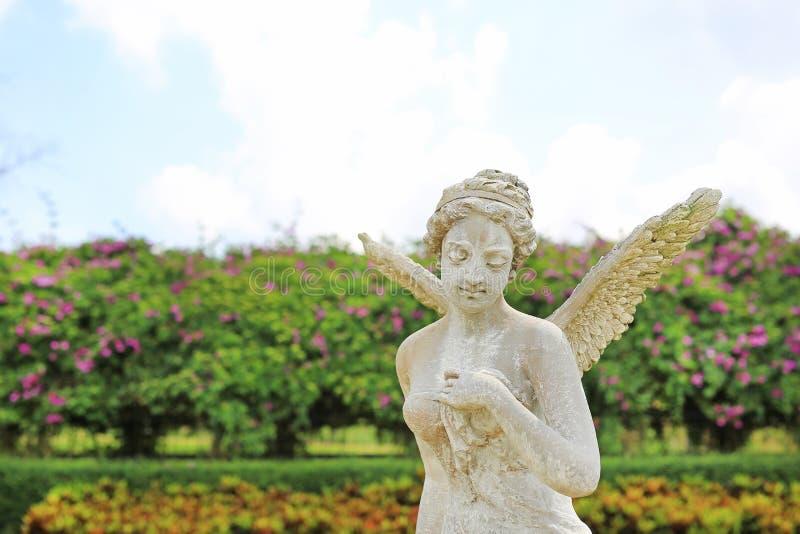 Piękna anioł statua w ogródzie fotografia royalty free