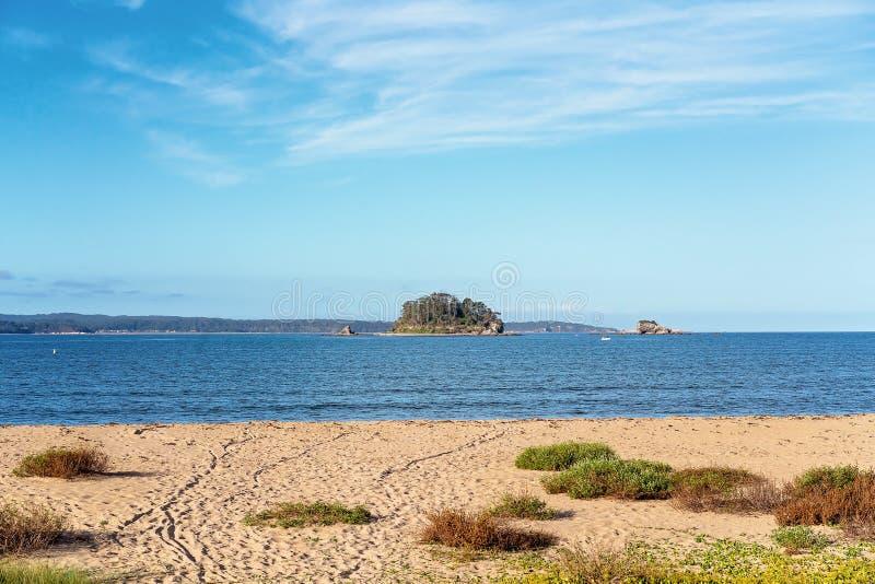 Piękna Australijska linia brzegowa plaża I ocean obrazy royalty free