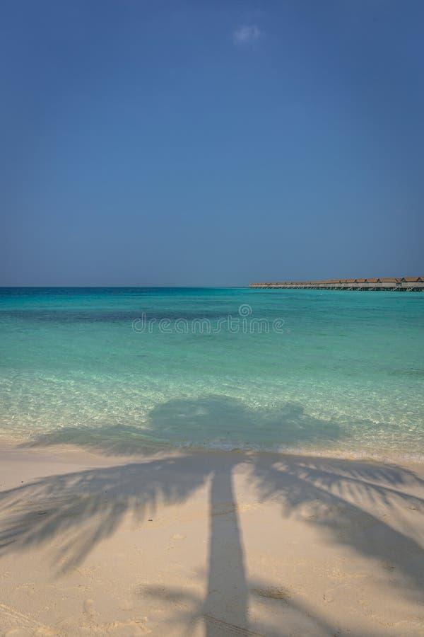 Piękna błękitne wody plaża w tropikalnym raju z bungalowami w tle w Maldives, zdjęcie royalty free