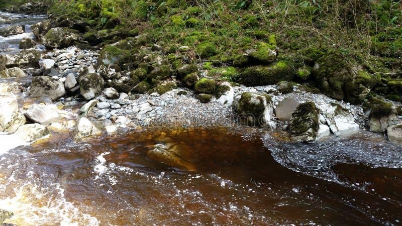 Piękna bieżąca rzeka z słońce promieniami fotografia royalty free