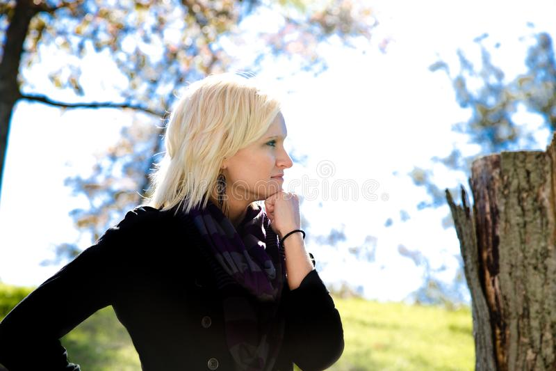 Piękna blondynka kraju Gal ręka Pod podbródkiem obrazy stock