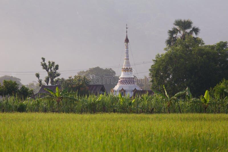 Piękna burmese buddist stupa na ryżowym polu w Hpa-An obrazy stock