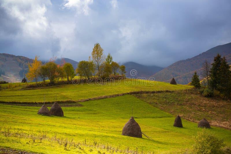 Piękna Carpathians halna dolina po deszczu obrazy stock