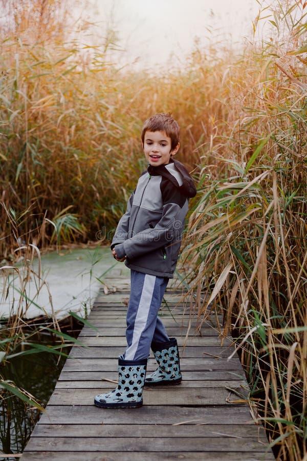 Piękna chłopiec bawić się w sitowiu fotografia stock