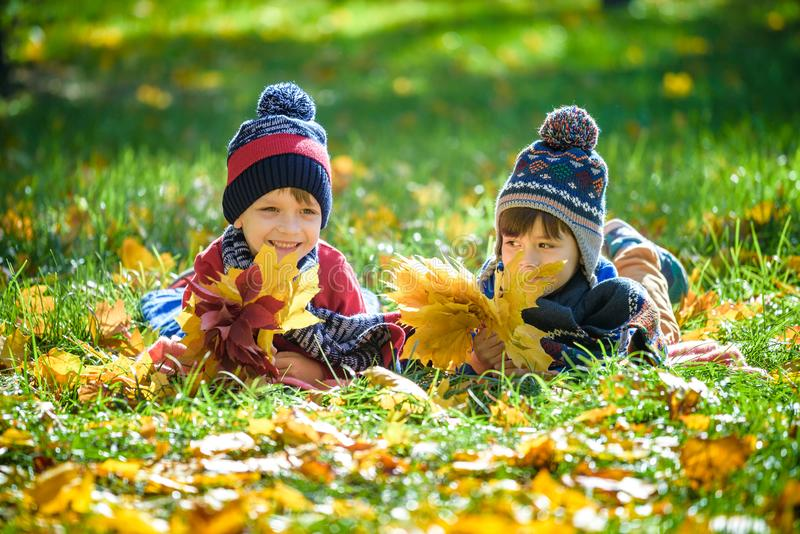 Piękna chłopiec, małe dziecko kłaść z mnóstwo żółtymi jesień liśćmi w parku Żartuje chłopiec ma zabawę na pogodnym ciepłym Paździ fotografia royalty free