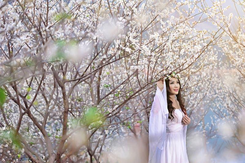 Piękna Chińska dziewczyna w śliwce obrazy stock