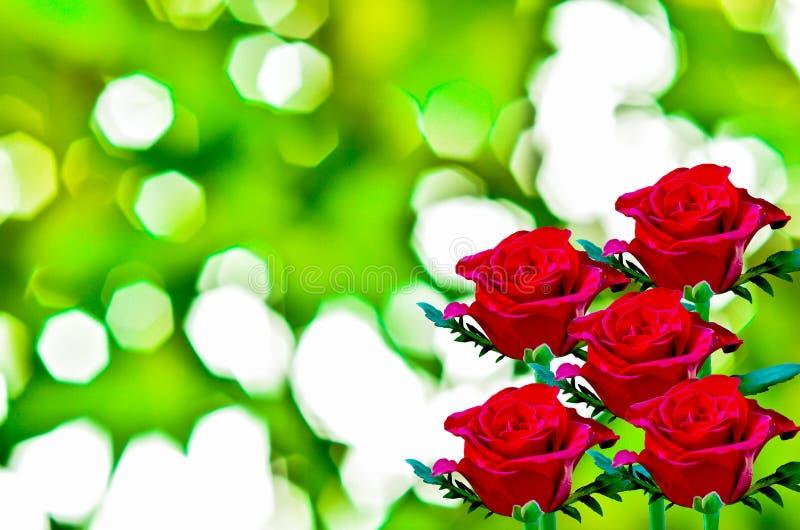 Piękna czerwieni róża obraz stock