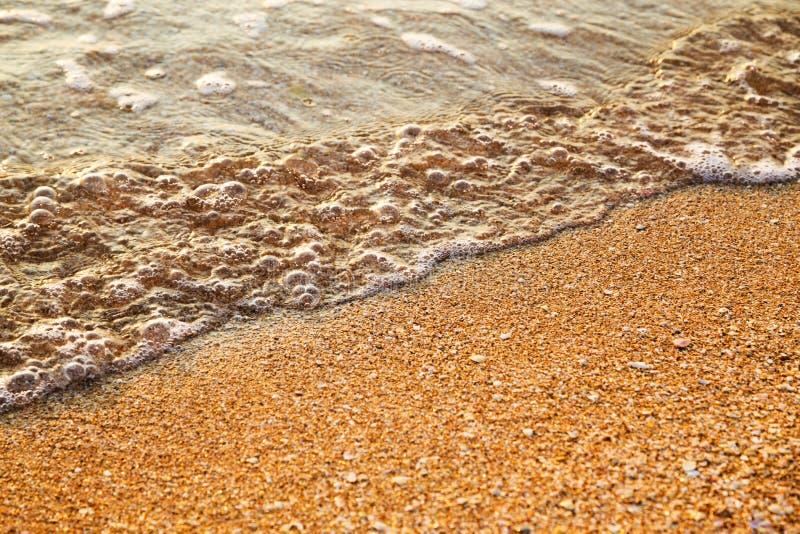 Piękna czochra na piasek plaży przy wschodem słońca obraz royalty free