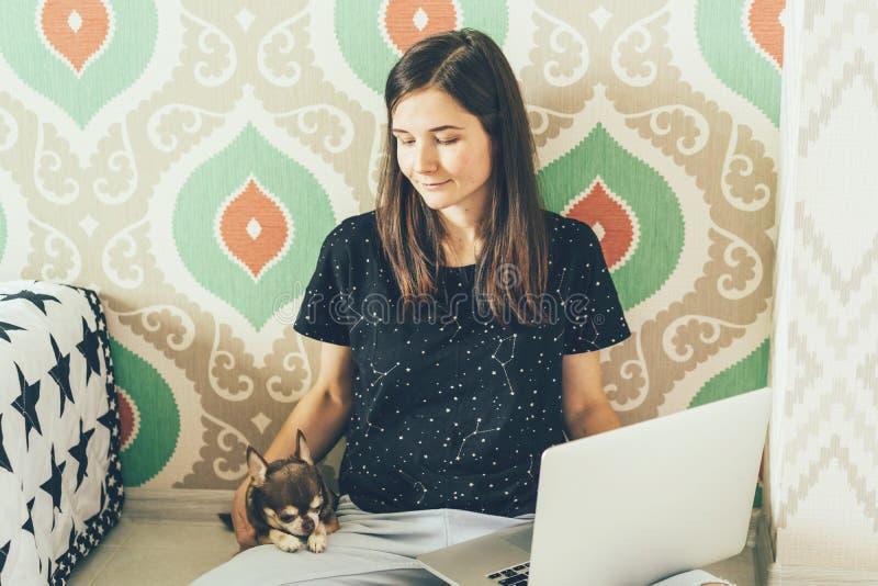 Piękna czuła dziewczyna siedzi na podłodze, trzymający pieszczotliwego Chuahuahua domu psa i laptop Freelance w sposobie obraz stock