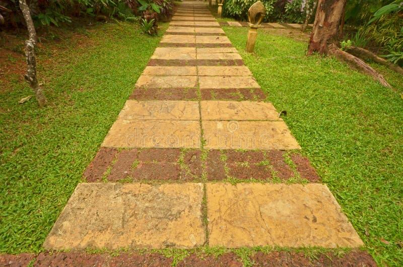 Piękna długa kamienna droga przemian w parku obraz royalty free