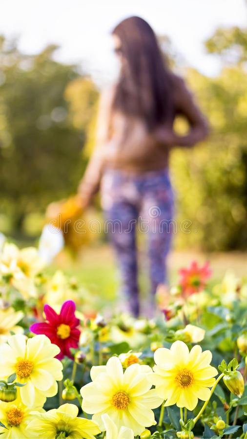 Piękna długa z włosami kobieta i wiele kwiaty obraz royalty free
