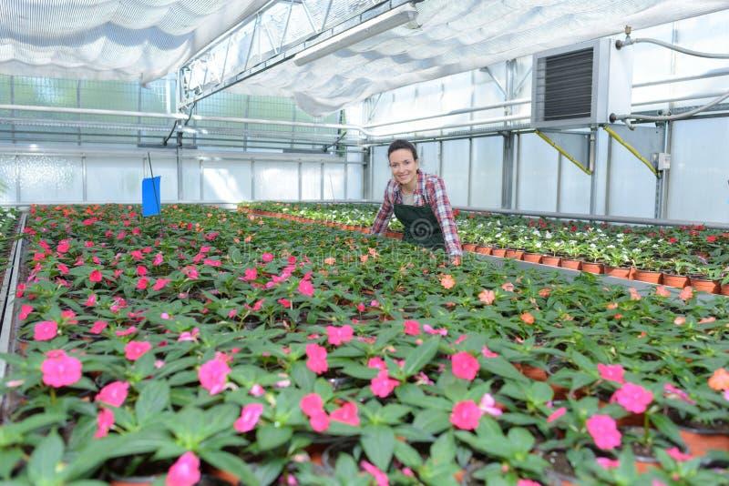 Piękna dama w rośliny pepinierze fotografia stock