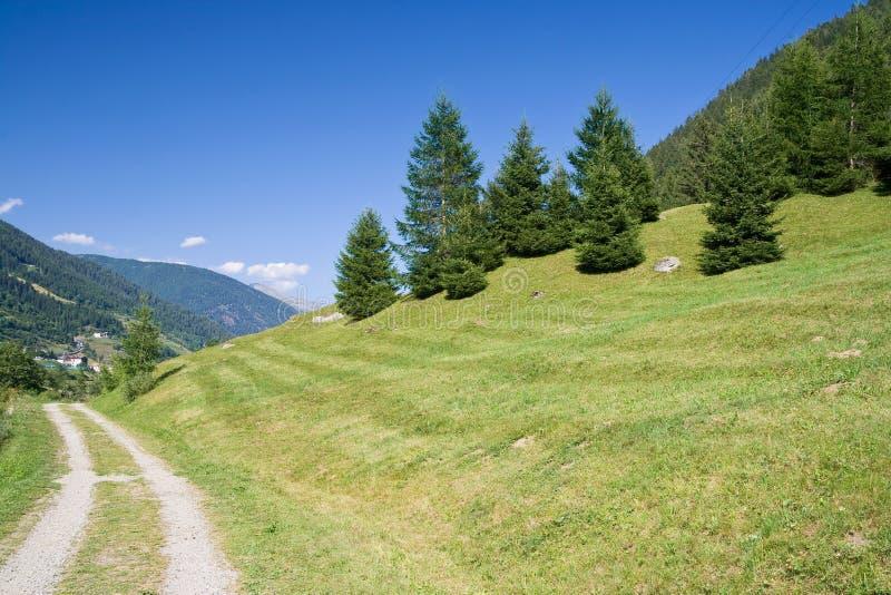 piękna dolina obraz stock