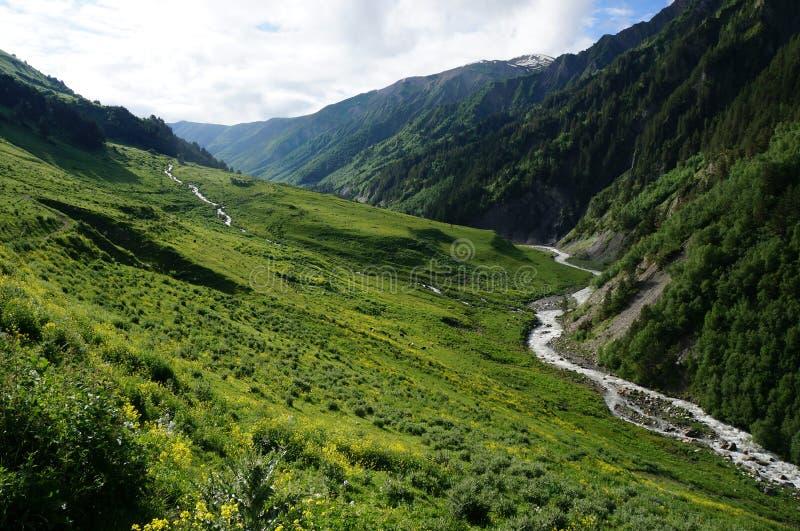 Piękna dolina w Gruzja obraz royalty free