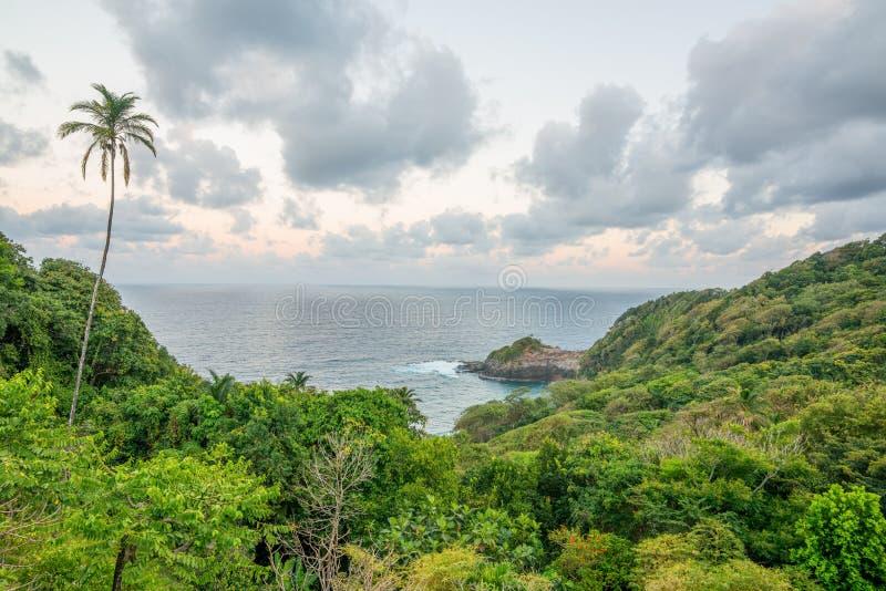 Piękna Dominica linia brzegowa przed Huraganowym Maria zniszczeniem zdjęcia royalty free