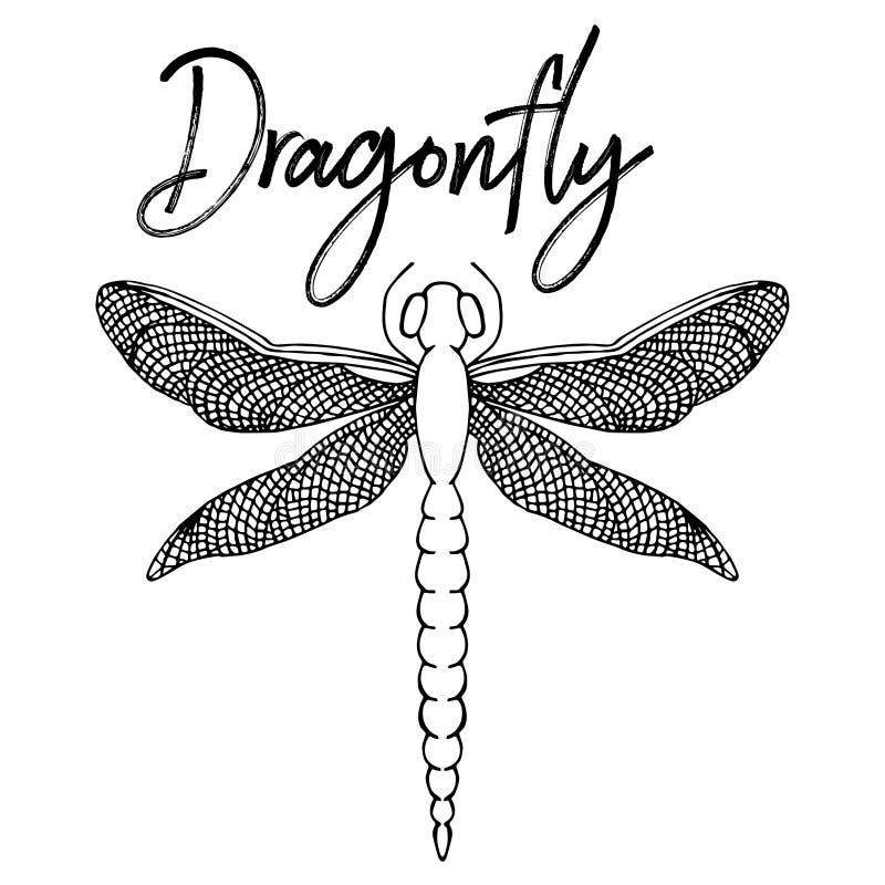 Piękna dragonfly kolorystyka Odizolowywający na bielu Ręka rysujący vect ilustracji