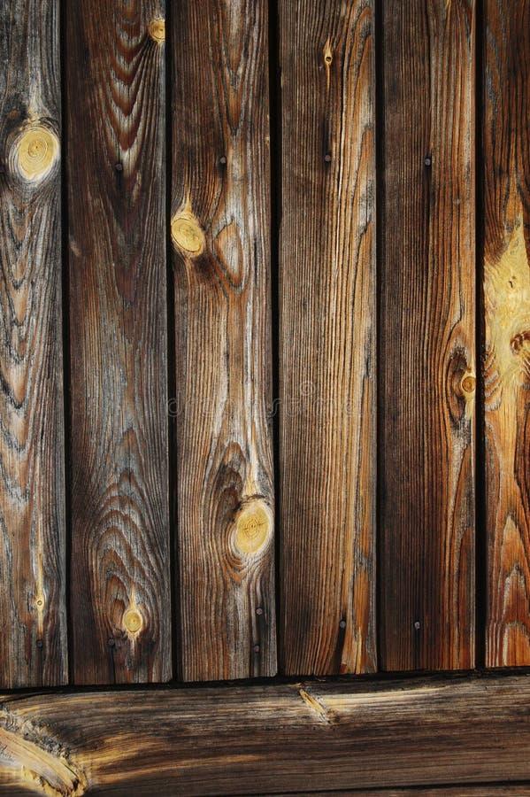 Piękna drewniana tekstura zdjęcie royalty free