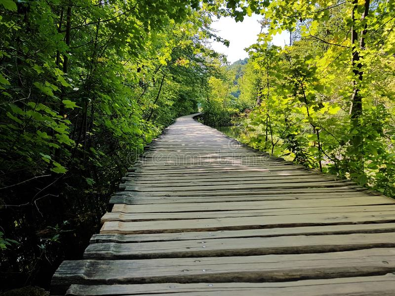 Piękna droga drewniane deski na Plitvice jeziorach obrazy stock