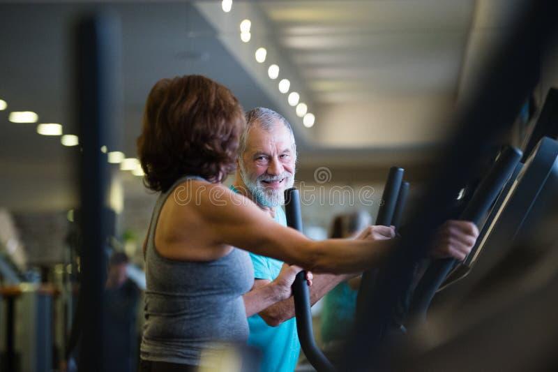 Piękna dysponowana starsza para w gym robić cardio opracowywał fotografia stock