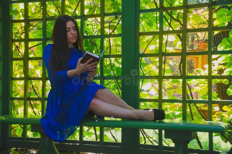 Piękna dziewczyna w błękitnym smokingowym odpoczynkowym czytaniu książka w gazebo obraz stock