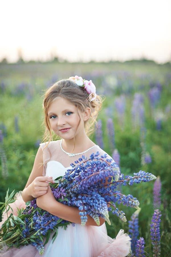 Piękna dziewczyna w menchiach ubiera trzymający lupine przy zmierzchem na polu Pojęcie natura i romans szczęśliwego dzieciństwa obrazy royalty free