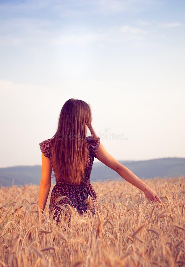 Piękna dziewczyna w pszenicznym polu przy zmierzchem zdjęcia royalty free