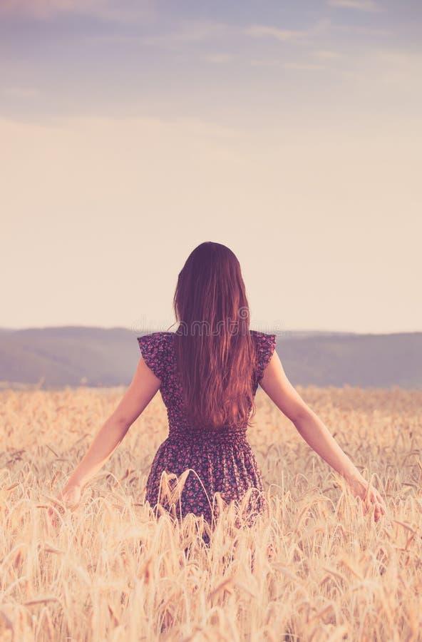 Piękna dziewczyna w pszenicznym polu przy zmierzchem obrazy stock