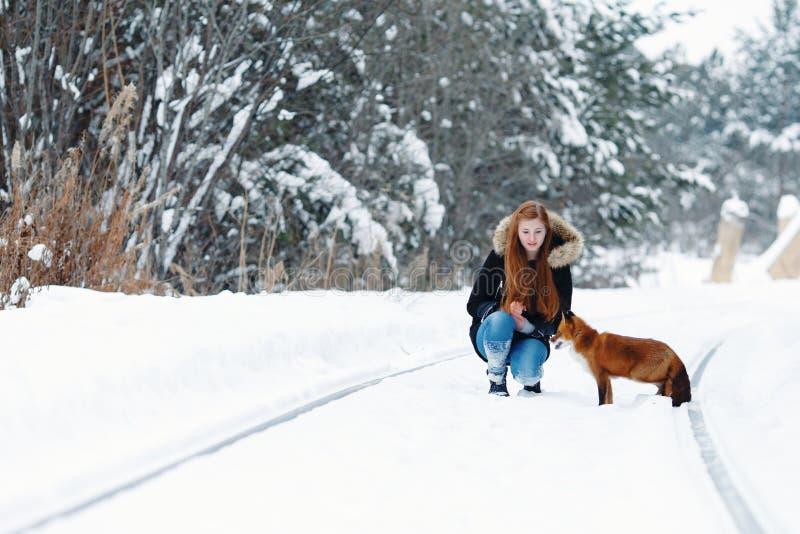 Piękna dziewczyna z czerwonym lisem na spacerze zdjęcie royalty free