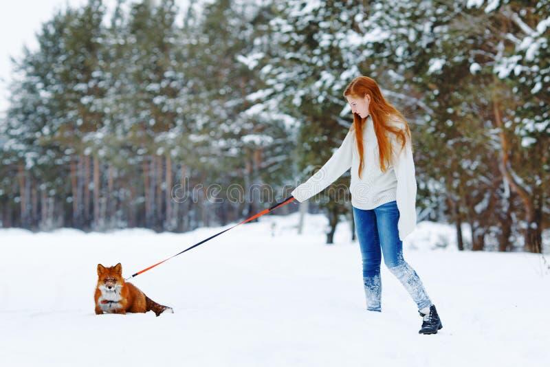 Piękna dziewczyna z czerwonym lisem na spacerze zdjęcia stock