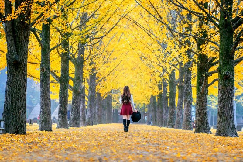 Piękna dziewczyna z kolorów żółtych liśćmi w Nami wyspie, Korea zdjęcie stock