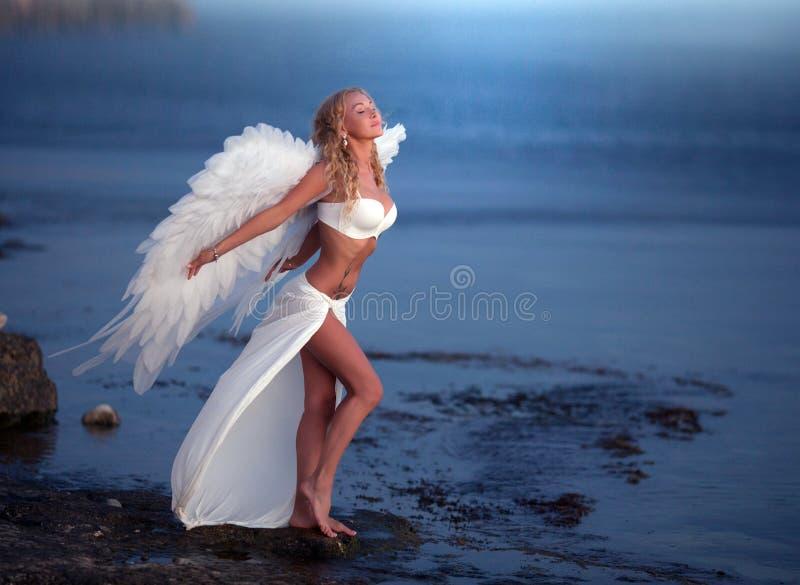 Piękna dziewczyna z skrzydłami zdjęcia stock