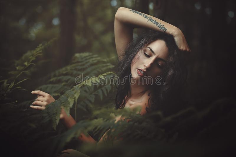 Piękna dzika boginka obraz stock