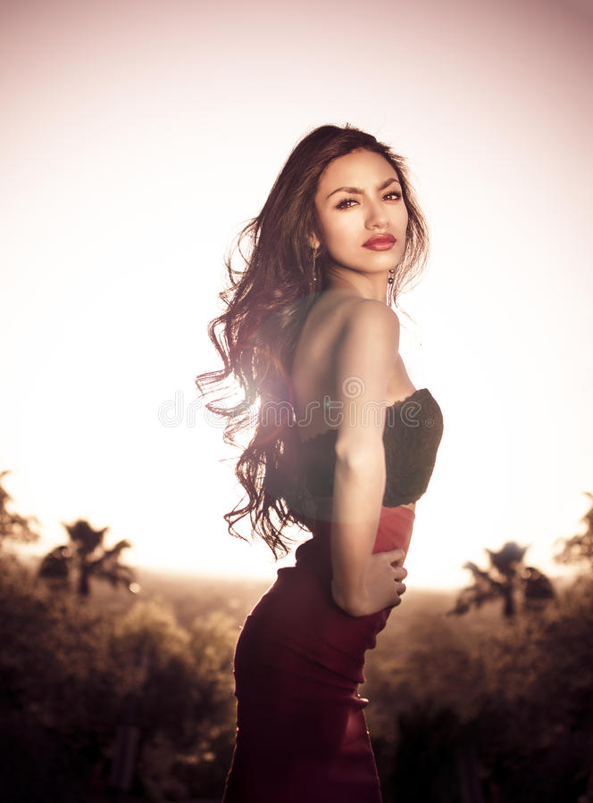 Piękna elegancka młoda kobieta obraz royalty free