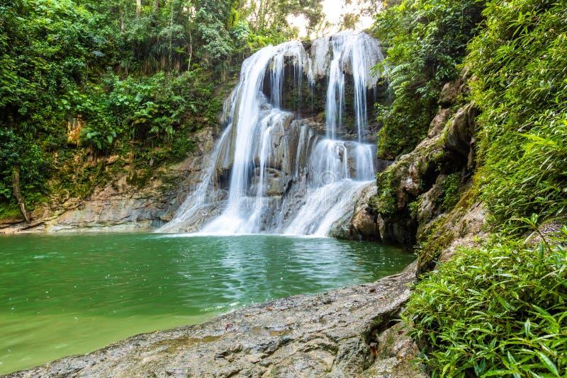 Piękna Gozalandia siklawa w San Sebastian Puerto Rico fotografia stock