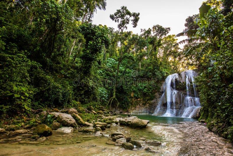 Piękna Gozalandia siklawa w San Sebastian Puerto Rico obrazy royalty free