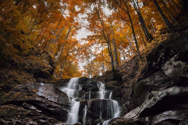 Piękna halna siklawa w jesień lesie fotografia royalty free