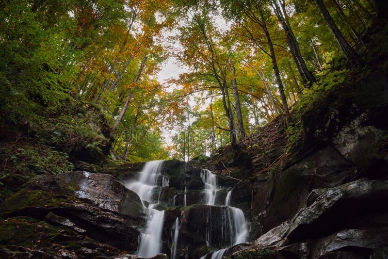Piękna halna siklawa w jesień lesie zdjęcie royalty free